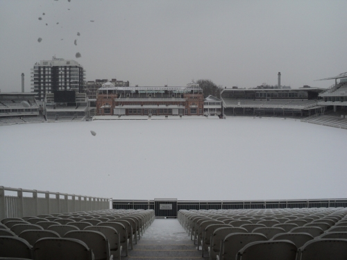 whole ground in snow